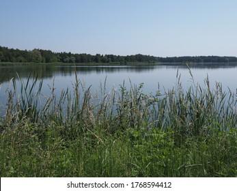Schilf und Ansicht zum Brutteich in der europäischen Goczalkowice Stadt im schlesischen Bezirk in Polen. klarer blauer Himmel im Jahr 2020 warm sonnigen Frühlingstag im Juni.