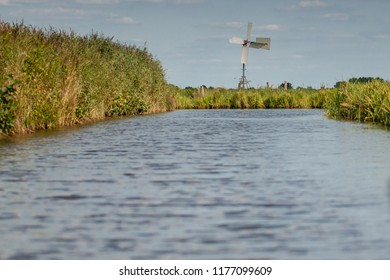 Reedlands and water channels between the meadows of Hollandse polder Natural Dutch agriculture landscape