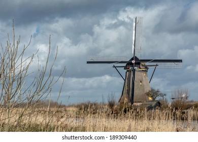 Reeds along a mill at Kinderdijk Overwaard in the Netherlands, a Unesco heritage.