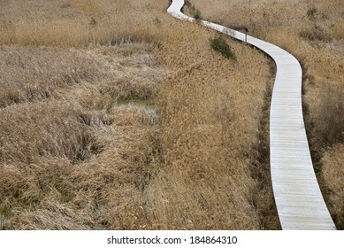 Reeds wooden corridor leading into the distance, expressing the concept of a peaceful future.