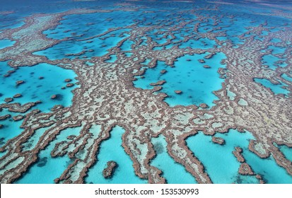 Reef fingers leading to the horizon
