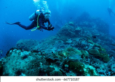 Reef and Marine life in Chumphon Marine National Park, Thailand