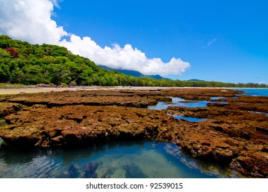 Reef to Rainforest Daintree Queensland