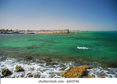 Reef in the Red Sea. Hurghada in Egypt.