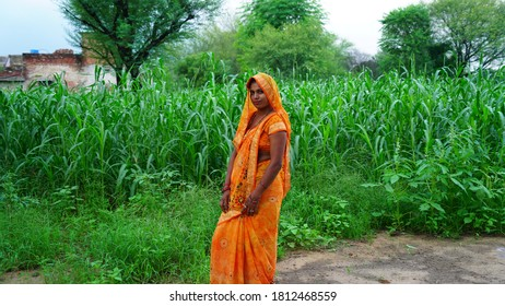 Reengus, Jaipur, India-21 March 2020; Beautiful Indian woman side view portrait, wearing orange Saree in a green field. Indian rural life concept.