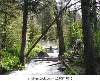 Reese Creek in the Bridger Mountain Range Bozeman Montana