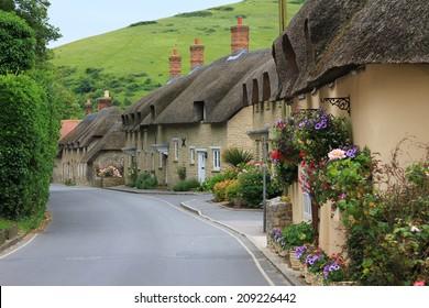 reet houses beside the street, in the little village lulworth, dorset