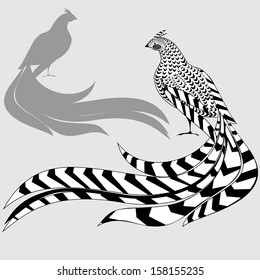 Reeves's Pheasant and silhouette of pheasant