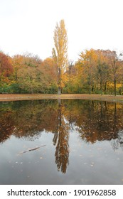 refelction in lake in park autumm