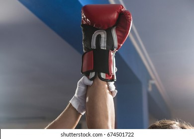 Referee holding hand of winning male boxer at fitness studio
