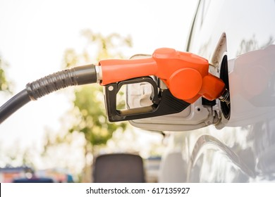 refilling the white car with fuel on a filling station