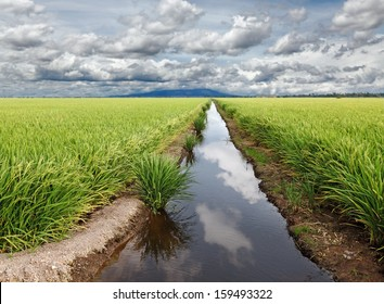 Reflection of the blue cloudy sky on the water surface of an irrigation canal in a rural tropical rice field.