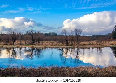 Reflection of blue sky