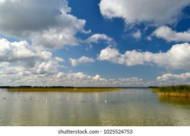 Reflection of clouds in the water. Lake Shore.