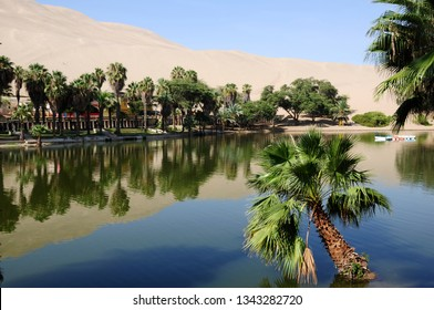 Reflection of dune and palm trees on the shores of the Huacachina lagoon in the ica desert.