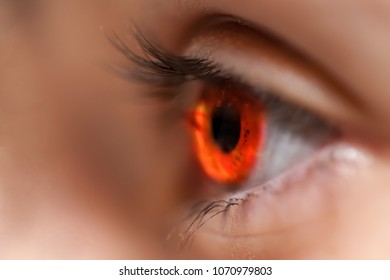 Reflection of fire in pupil of large eye, side view.