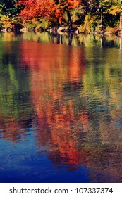 Reflection of foliage on a pond in Central Park during fall season