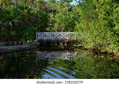 Reflection of footbridge in water, Placencia Peninsula, Belize