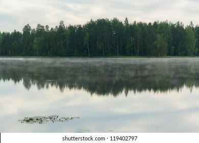 Reflection of forest in a lake in Finnish countryside