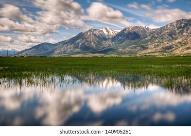 A reflection of Jobs Peak on the green grass of Carson Valley, Nevada.