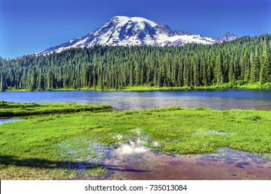Reflection Lake Mount Rainier Snow Mountain Paradise Mount Rainier National Park Washington