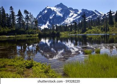 Reflection Lake Mount Shuksan Mount Baker Highway Snow Mountain Grass Trees Washington State Pacific Northwest