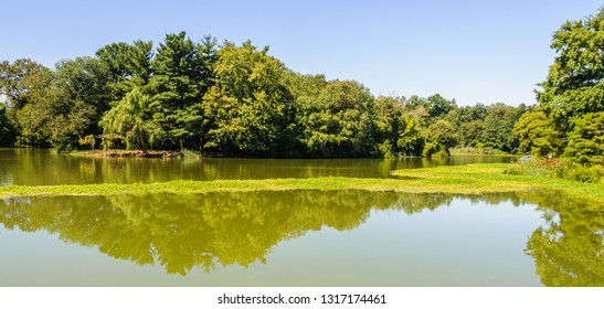 Reflection in the lake in Prospect Park, the district of Brooklyn, New York, USA