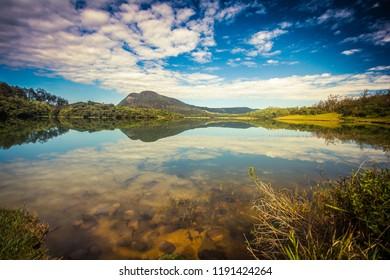 Reflection in the morning at Ambewela lake in Sri Lanka