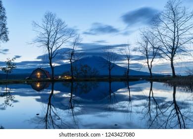 Reflection of Mountain Fuji with dry trees at blue sunrise sky in front of lake near Fujikawaguchiko, Yamanashi, Japan