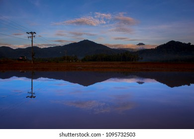 Reflection mountain in the rice field
