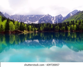 Reflection of mountains and trees in the lake, Slovenia