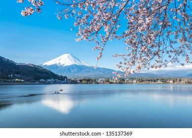 Reflection of Mt Fuji and Cherry Blossom on lake Kawaguchiko