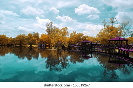 Reflection of a nature landscape by the lakeside in infrared