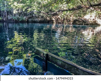 Reflection on Angelita's cenote in Tulum