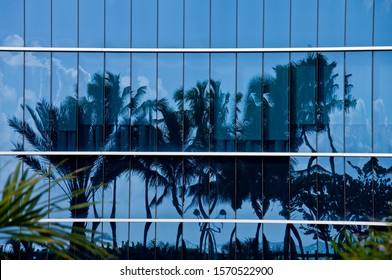 Reflection of palm trees in glass building, Miami Beach, Florida, USA