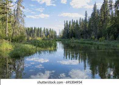 Reflection pond and landscape at the creek joining Kingsmere Lake and Waskesiu Lake in Prince Albert National Park in Saskatchewan Canada.