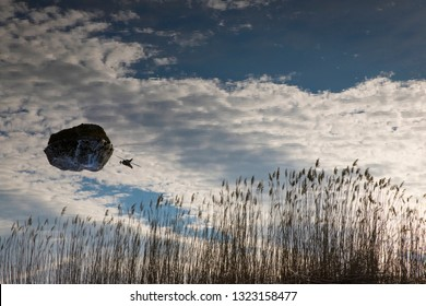 Reflection of reeds and a pebble on the lake with the sky in the background - Image upside down