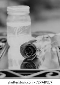 Reflection rose