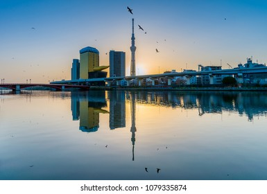 Reflection of SkyTree on Sumida River