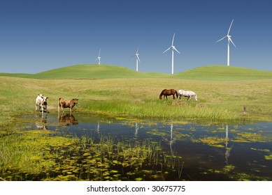 Reflection of Stark White Electrical Power Generating Windmills, Turbines on Rolling Hills of Green, Livestock, Cattle, Horses, Rio Vista, California