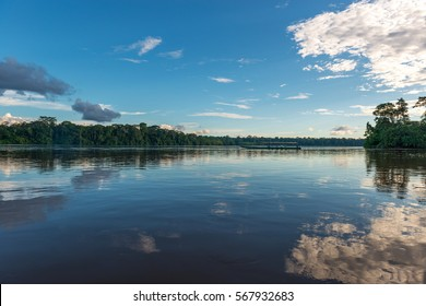 Reflection of the trees along the banks of the Amazon river during a boat excursion.