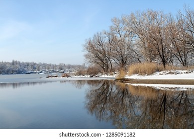 Reflection of trees in an icy river