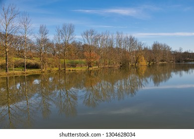 reflection of trees in a lake with a blue sky