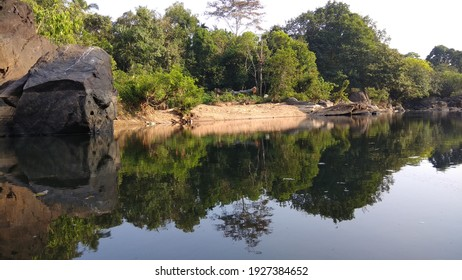 reflection of the trees on the stagnant water