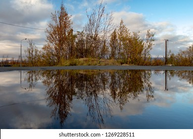 Reflection of trees of posts and clouds in a puddle, September 6, 2018, Norilsk