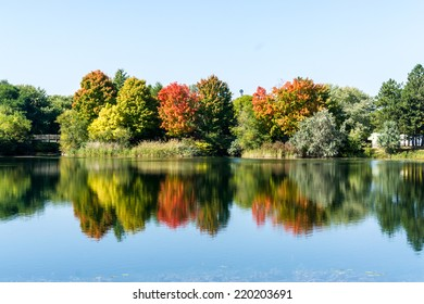 Reflection of trees in water in an autumn landscape.