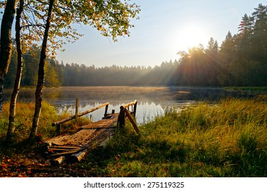 Reflection of trees, in water of magically beautiful lake in sun beams at sunrise. Woods of the Leningrad region. St. Petersburg. Nature of Russia.