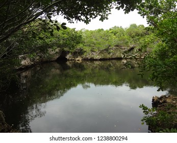 Reflection in Water on Island of Eleuthera in the Bahamas