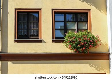 Reflection in Windows Allerheiligenstrasse Erfurt Germany