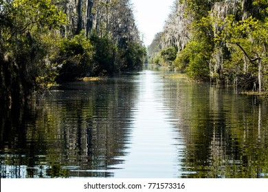 Reflections along canal in the Okefenokee Swamp, Georgia
